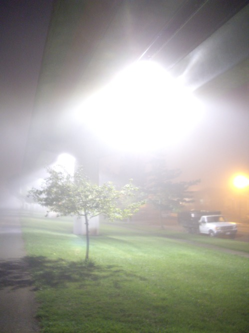 lights-and-fog1